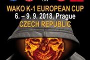 WAKO K-1 EUROPEAN CUP 2018 Report